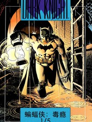 蝙蝠俠暗夜騎士傳奇:毒癮